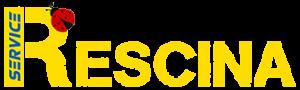 Logo H100